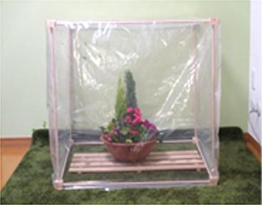 ビニール温室の様子1